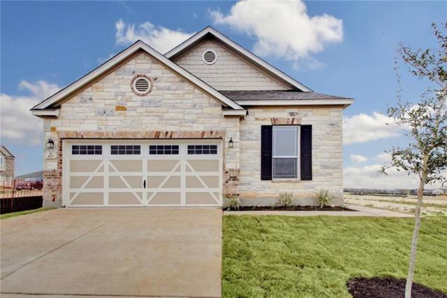 105 Muenster Dr, Hutto, TX 78634 (#6749221) :: 12 Points Group