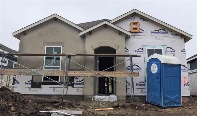 2800 Joe Dimaggio Blvd #50, Round Rock, TX 78665 (#6797672) :: Papasan Real Estate Team @ Keller Williams Realty
