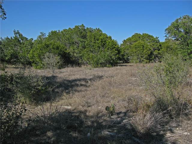 1130 Hidden Frst, Canyon Lake, TX 78133 (MLS #6799543) :: Brautigan Realty