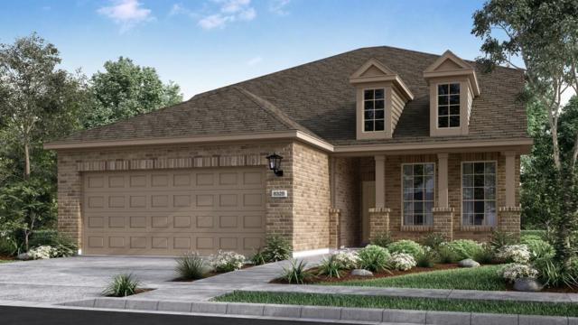 5095 Cassia Way, Round Rock, TX 78665 (#6813238) :: Papasan Real Estate Team @ Keller Williams Realty