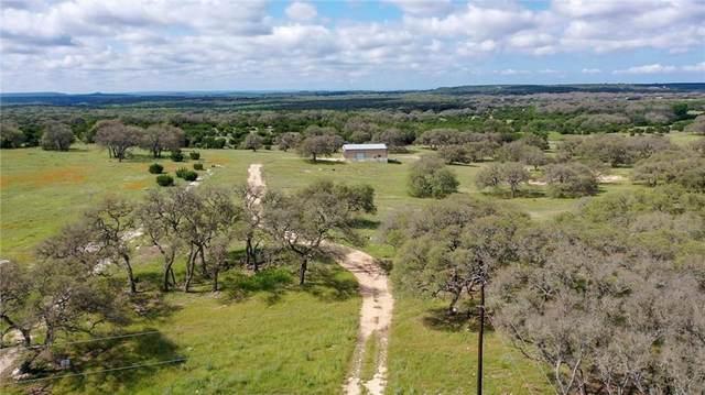 120 Buffalo Bnd, Lampasas, TX 76550 (#6816619) :: Zina & Co. Real Estate