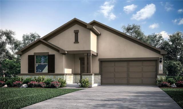 301 Tulum Terrace, Leander, TX 78641 (#6822067) :: Watters International