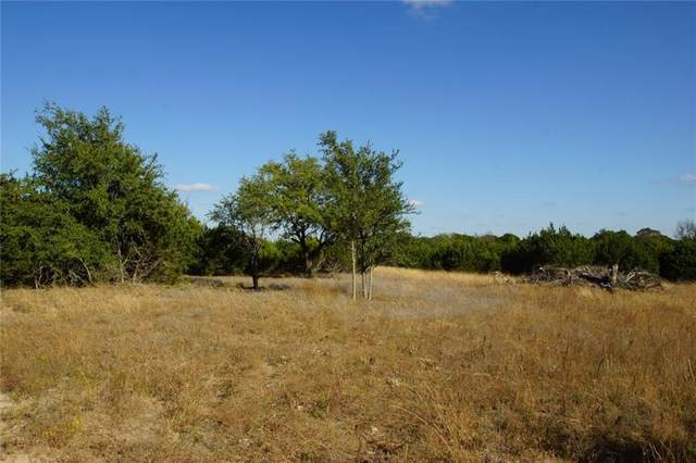 Lot 7 Miller Creek Blf, Briggs, TX 78608 (MLS #6824665) :: Vista Real Estate