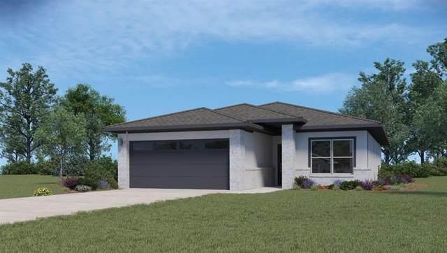 437 Agave Azul Way, Leander, TX 78641 (#6834372) :: Zina & Co. Real Estate
