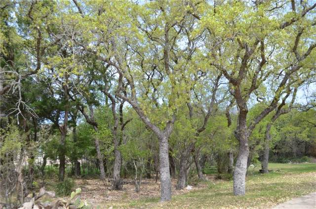 22039 Briarcliff Dr, Spicewood, TX 78669 (#6837932) :: The Summers Group