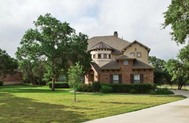 249 Southern Sunset Cv, Driftwood, TX 78619 (#6847006) :: Ben Kinney Real Estate Team