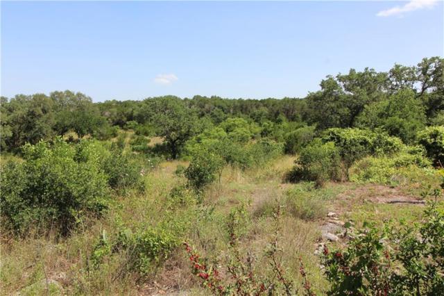1001 Oak Grove Rd, San Marcos, TX 78666 (#6852356) :: The Heyl Group at Keller Williams