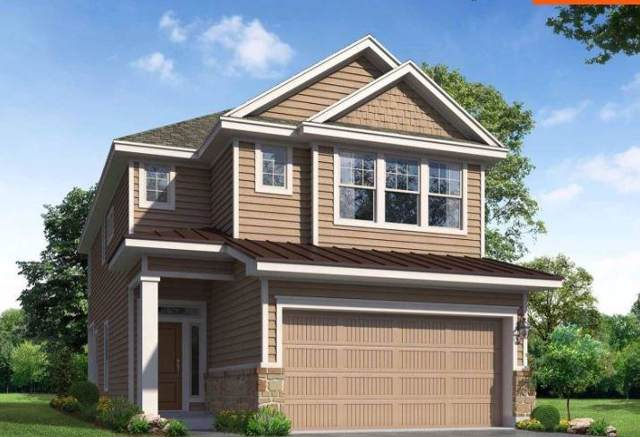 226 Alexander, Kyle, TX 78640 (#6863010) :: Zina & Co. Real Estate