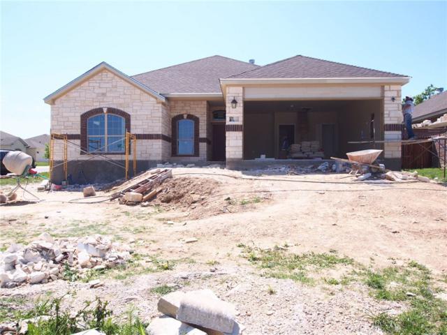 420 Western Sky Trl, Jarrell, TX 76537 (#6866012) :: Ana Luxury Homes