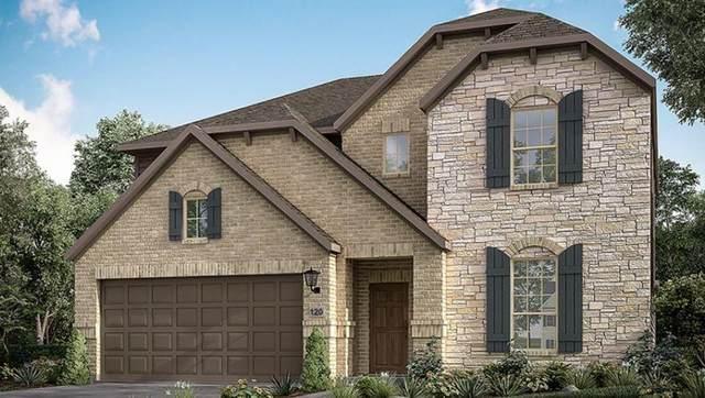 216 Carolina Jasmine Rd, San Marcos, TX 78666 (#6886793) :: Papasan Real Estate Team @ Keller Williams Realty