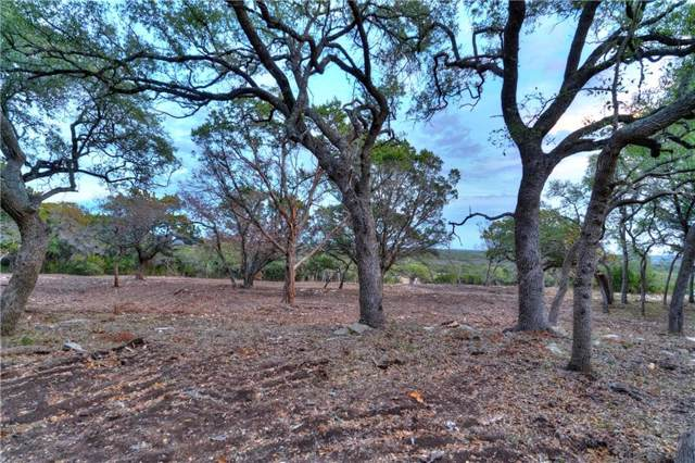 002 W Driftwood Valley Trail, Driftwood, TX 78619 (#6890175) :: 12 Points Group