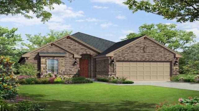 5013 Fiore Cv, Round Rock, TX 78665 (#6898305) :: Watters International