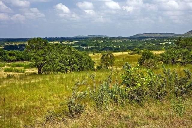 245 Chivo Way, Johnson City, TX 78636 (MLS #6915825) :: Green Residential