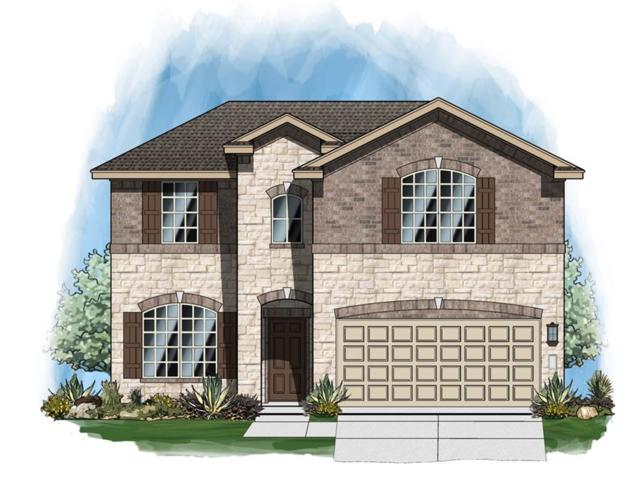 20133 Navarre Ter, Pflugerville, TX 78660 (#6923815) :: The ZinaSells Group