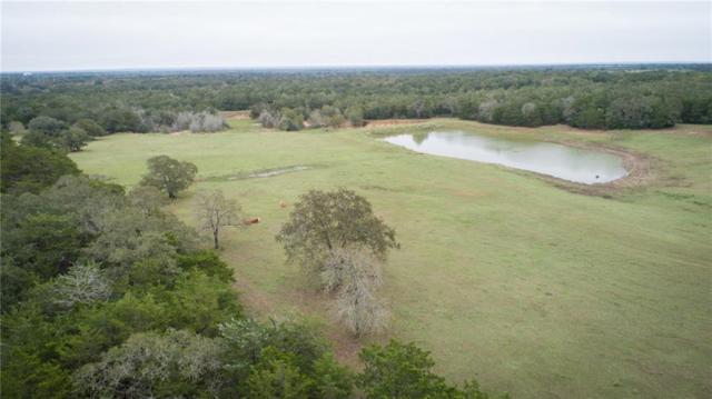 14199 E State Highway 97, Waelder, TX 78959 (#6926545) :: Papasan Real Estate Team @ Keller Williams Realty