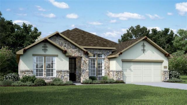 717 Santa Catalina Way, Leander, TX 78641 (#6928290) :: Douglas Residential