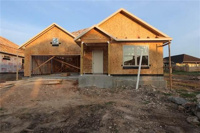 152 Fawn River Run, Kyle, TX 78640 (#6929665) :: Papasan Real Estate Team @ Keller Williams Realty