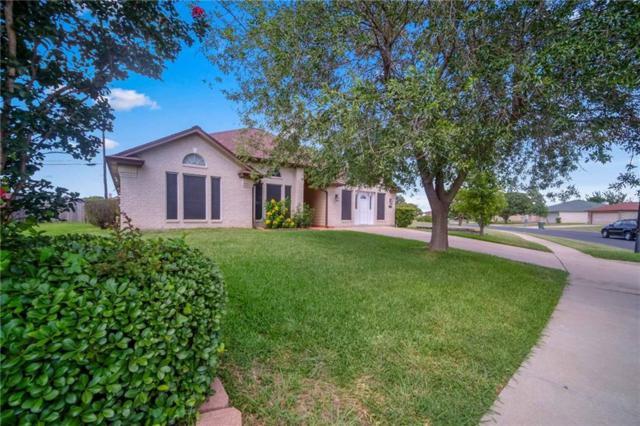 2001 Grey Fox Trl, Killeen, TX 76543 (MLS #6966434) :: Vista Real Estate