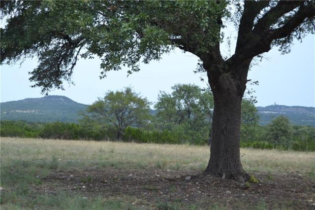 472 Turkey Creek Ln #B, Blanco, TX 78606 (#6997686) :: The ZinaSells Group