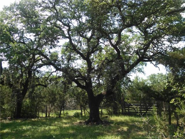15 ACR Fm 2325, Blanco, TX 78606 (#7012496) :: Papasan Real Estate Team @ Keller Williams Realty
