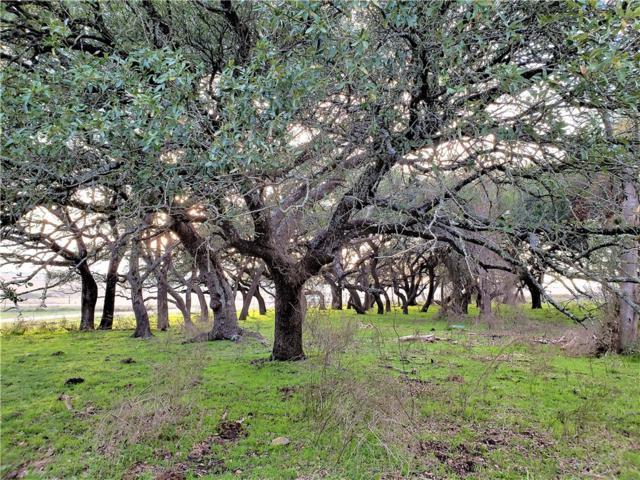 910 County Road 223, Florence, TX 76527 (#7030239) :: Papasan Real Estate Team @ Keller Williams Realty