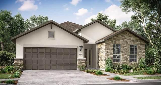 224 Majestic Sage Trl, San Marcos, TX 78666 (#7040068) :: Papasan Real Estate Team @ Keller Williams Realty