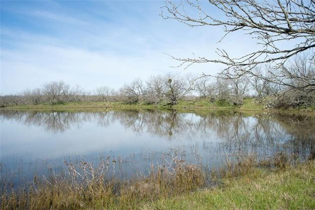 629 County Road 209A, Buckholts, TX 76518 (#7046568) :: The ZinaSells Group