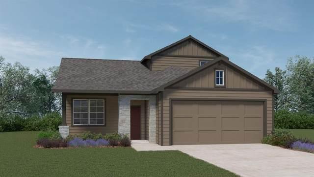 209 Big Cypress Bayou Rd, Hutto, TX 78634 (#7047912) :: The Perry Henderson Group at Berkshire Hathaway Texas Realty