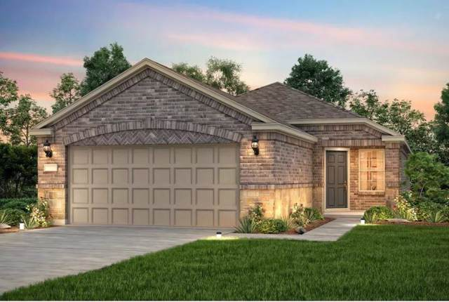 221 Comal Ln, Georgetown, TX 78633 (#7057593) :: Lucido Global
