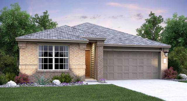 296 Mineral Springs Dr, Kyle, TX 78640 (#7061932) :: The Heyl Group at Keller Williams
