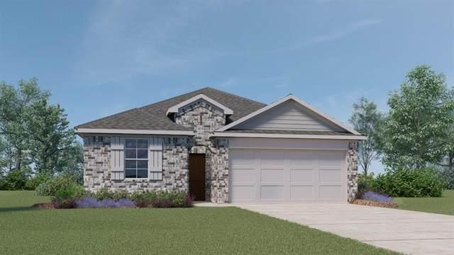 257 Sky Meadows Cir, San Marcos, TX 78666 (#7070221) :: First Texas Brokerage Company