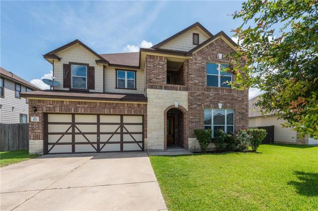523 Apricot Dr, Kyle, TX 78640 (#7078525) :: The Perry Henderson Group at Berkshire Hathaway Texas Realty