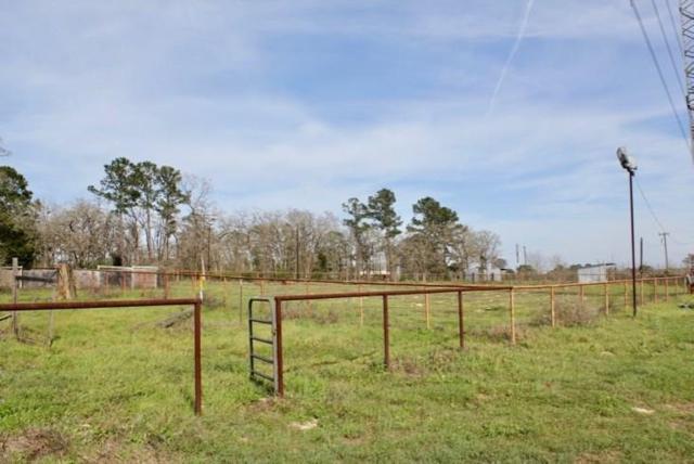 601 Pine Tree Loop, Bastrop, TX 78602 (#7091532) :: Watters International