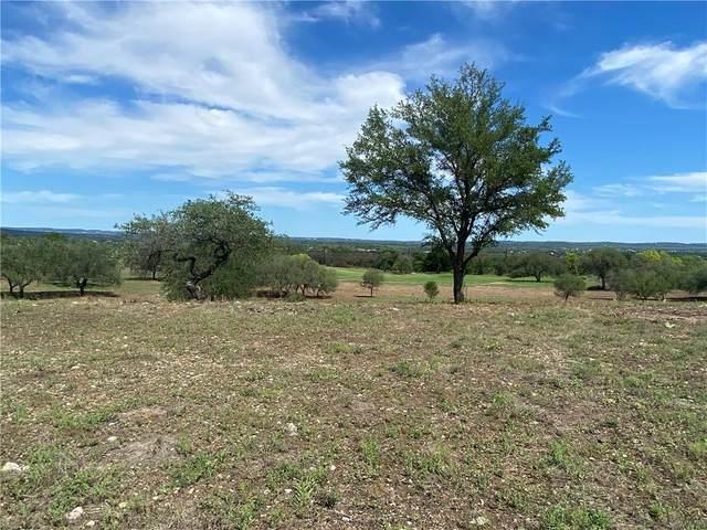 27001 Haynie Flat Rd, Spicewood, TX 78669 (#7097833) :: Lucido Global