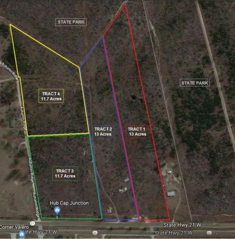 TBD Tract 3 SE Sh 21, Bastrop, TX 78602 (#7108511) :: The ZinaSells Group