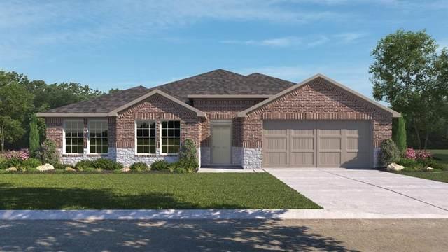 452 Colovista Pkwy, Bastrop, TX 78602 (#7111833) :: Papasan Real Estate Team @ Keller Williams Realty