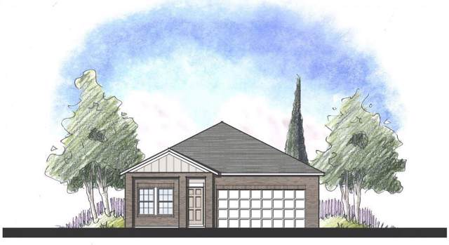 344 Lacey Oak Loop, San Marcos, TX 78666 (#7117155) :: Ana Luxury Homes