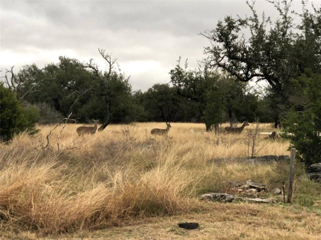 Lot 34 Oak Meadow Trl, Spicewood, TX 78669 (#7125717) :: The Heyl Group at Keller Williams