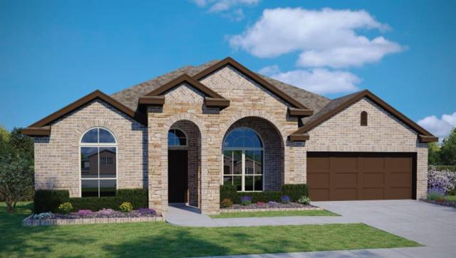 18312 Cercina Trl, Pflugerville, TX 78660 (#7133381) :: The Heyl Group at Keller Williams