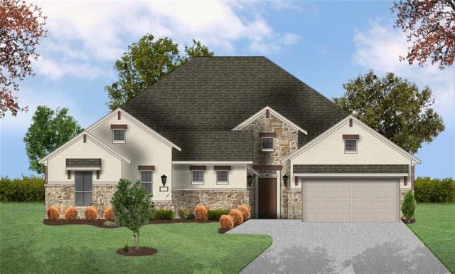 221 Hazelnut Ct, Driftwood, TX 78619 (#7139404) :: Papasan Real Estate Team @ Keller Williams Realty
