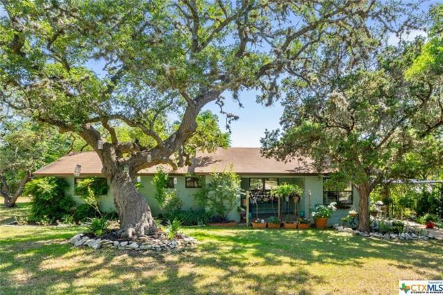 205 Harmons Way, San Marcos, TX 78666 (#7139519) :: Ana Luxury Homes