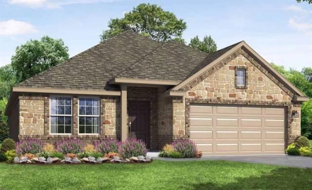 309 Blue Oak Blvd, San Marcos, TX 78666 (#7169710) :: Ana Luxury Homes