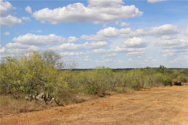 1011 Twin Creeks, Seguin, TX 78155 (#7175059) :: Papasan Real Estate Team @ Keller Williams Realty