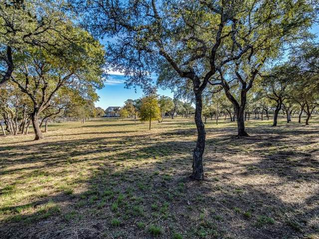 823 Post Oak Dr, Dripping Springs, TX 78620 (#7182432) :: Realty Executives - Town & Country