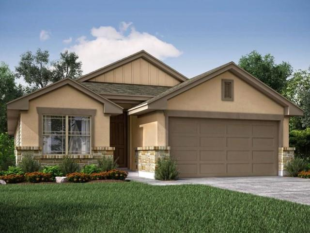 7305 Loggia Pl, Round Rock, TX 78665 (#7183315) :: Watters International