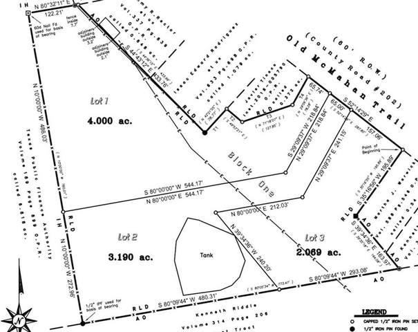 1700 Old Mcmahan Trl, Lockhart, TX 78644 (#7189729) :: The Heyl Group at Keller Williams