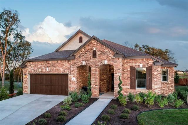 531 Kolbo Dr, Round Rock, TX 78665 (#7193395) :: Watters International