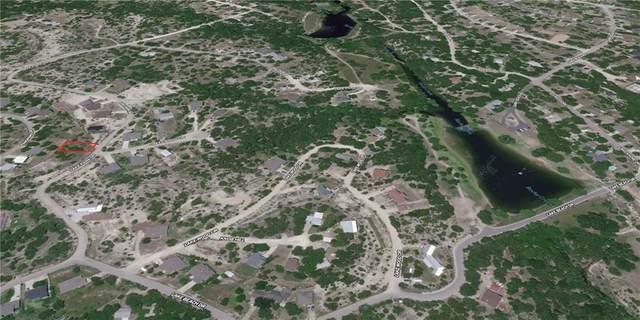 10638 Lake Park Dr, Dripping Springs, TX 78620 (MLS #7197200) :: Brautigan Realty