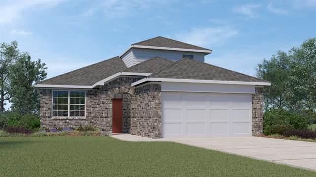 311 Fall Aster Dr, Kyle, TX 78640 (#7205811) :: Papasan Real Estate Team @ Keller Williams Realty