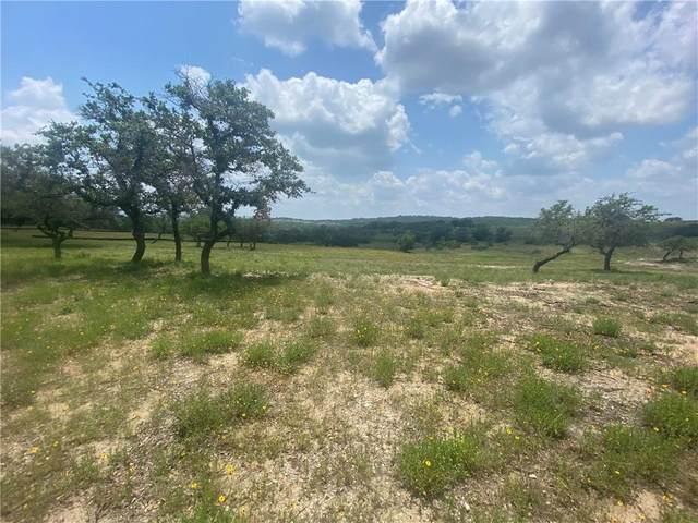 1217 Saddlebrook Canyon Ct, Spicewood, TX 78669 (MLS #7221886) :: Brautigan Realty